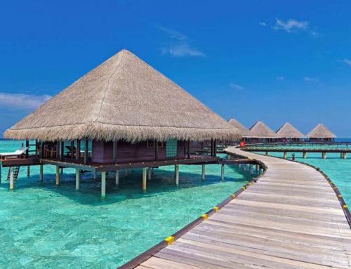 NetApp – Eden Viaggi: la soluzione per un business che non va mai in vacanza