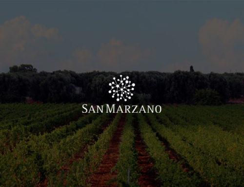 Qualità di prodotto e tracciabilità – Cantine San Marzano